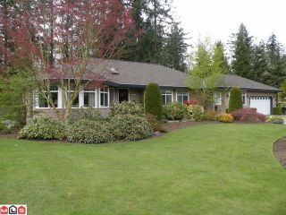 Photo 1: 2185 179TH Street in Surrey: Hazelmere Home for sale ()  : MLS®# F1001370