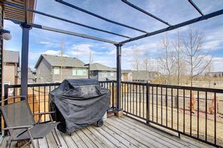 Photo 19: 107 Nolanshire Point NW in Calgary: Nolan Hill Detached for sale : MLS®# A1091457