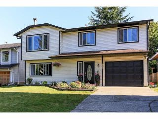 Photo 1: 9225 209A Crescent in Langley: Walnut Grove House for sale : MLS®# F1418568