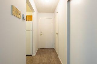 Photo 8: 104 4015 26 Avenue in Edmonton: Zone 29 Condo for sale : MLS®# E4259021