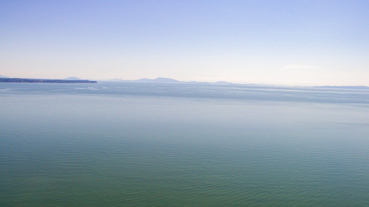 Main Photo: 13048 13 AVENUE in Surrey: Crescent Bch Ocean Pk. Land for sale (South Surrey White Rock)  : MLS®# R2534417