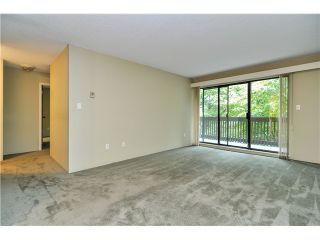 Photo 6: 415 9857 MANCHESTER Drive in Burnaby: Government Road Condo for sale (Burnaby North)  : MLS®# V1053693