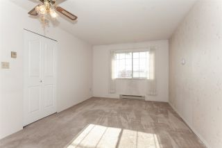 """Photo 13: 315 5360 205 Street in Langley: Langley City Condo for sale in """"Parkway Estates"""" : MLS®# R2317494"""