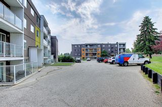 Photo 29: 303 4455A Greenview Drive NE in Calgary: Greenview Apartment for sale : MLS®# A1108022