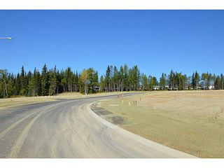 "Photo 4: LOT 17 BELL Place in Mackenzie: Mackenzie -Town Land for sale in ""BELL PLACE"" (Mackenzie (Zone 69))  : MLS®# N227310"