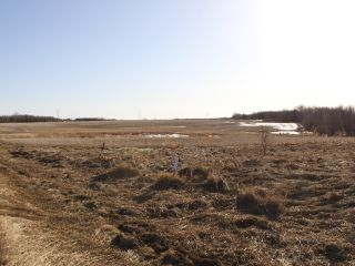 Photo 8: RGE RD 175 TWP RD 500: Rural Beaver County Rural Land/Vacant Lot for sale : MLS®# E4233179