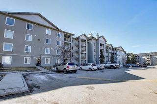 Photo 33: 2206 604 8 Street SW: Airdrie Apartment for sale : MLS®# A1081964