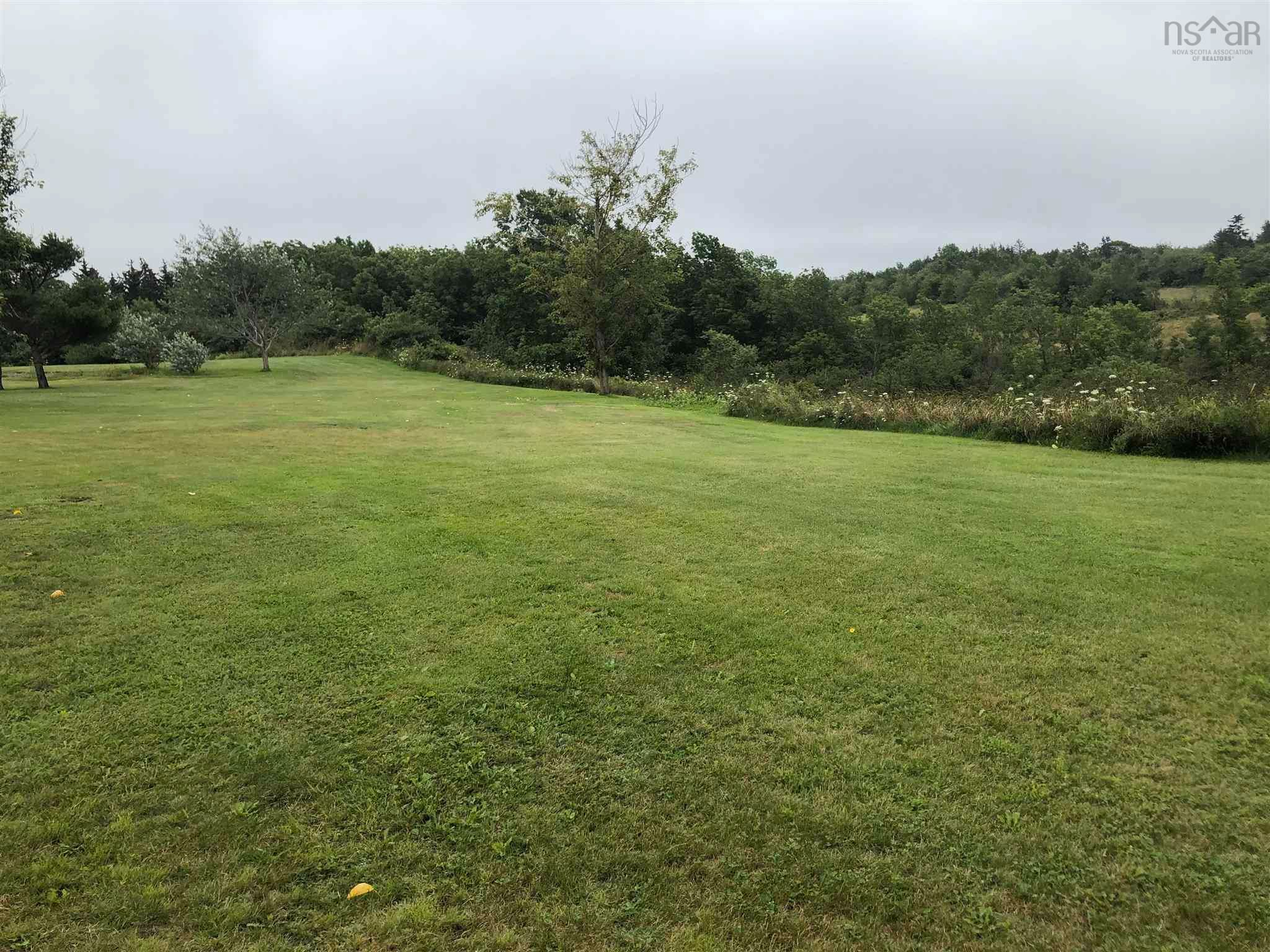 Main Photo: Lot 101 Highway in Plympton: 401-Digby County Vacant Land for sale (Annapolis Valley)  : MLS®# 202120343