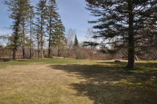 Photo 3: 136 SCHOOL Street in Middleton: 400-Annapolis County Residential for sale (Annapolis Valley)  : MLS®# 202006668