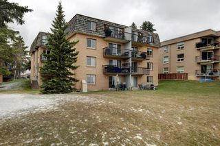 Photo 26: 43 528 Cedar Crescent SW in Calgary: Spruce Cliff Apartment for sale : MLS®# A1098683