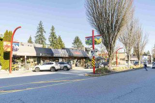 Photo 13: 2505 EDGEMONT BOULEVARD in North Vancouver: Edgemont House for sale : MLS®# R2557392