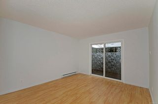 Photo 9: 2 477 Lampson St in : Es Old Esquimalt Condo for sale (Esquimalt)  : MLS®# 862134