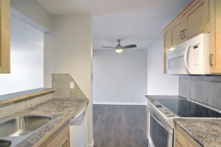 Photo 19: 4302 13045 6 Street SW in Calgary: Canyon Meadows Apartment for sale : MLS®# A1116316