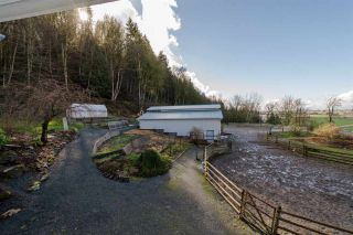 Photo 9: 41056 BELROSE Road in Abbotsford: Sumas Prairie House for sale : MLS®# R2039455