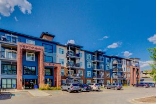 Photo 1: 419 5510 SCHONSEE Drive in Edmonton: Zone 28 Condo for sale : MLS®# E4248490