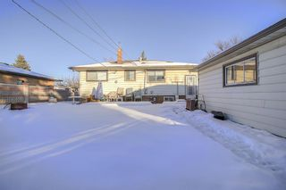 Photo 12: 49 Montrose Crescent NE in Calgary: Winston Heights/Mountview Detached for sale : MLS®# A1058784