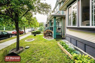 "Photo 60: 24113 102 Avenue in Maple Ridge: Albion House for sale in ""Homestead"" : MLS®# R2499816"