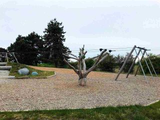 """Photo 25: 308 1768 55A Street in Delta: Cliff Drive Townhouse for sale in """"CITYHOMES NORTH GATE"""" (Tsawwassen)  : MLS®# R2587583"""