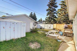 Photo 42: 1711 65 Street NE in Calgary: Pineridge Detached for sale : MLS®# A1038776