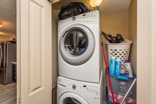 Photo 30: 144 1196 HYNDMAN Road in Edmonton: Zone 35 Condo for sale : MLS®# E4255292
