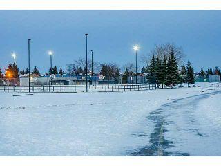Photo 16: 124 WHITEHORN Road NE in Calgary: Whitehorn Residential Detached Single Family for sale : MLS®# C3644255