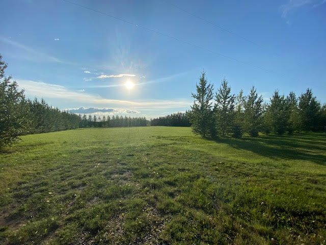 Main Photo:  in Wainwright: Peterson Estates Land Only for sale (MD of Wainwright)  : MLS®# A1068240