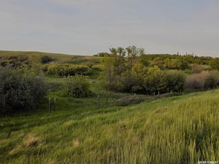 Photo 2: Diamond D Land and Cattle Ltd. in Lacadena: Farm for sale (Lacadena Rm No. 228)  : MLS®# SK833271