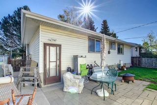 Photo 46: 132 Mardale Crescent NE in Calgary: Marlborough Detached for sale : MLS®# A1146772