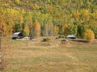 Photo 12: 668 Swan Lake Road | Kispiox Valley BC