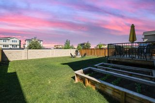 Photo 48: 145 Rainbow Falls Heath: Chestermere Detached for sale : MLS®# A1120150