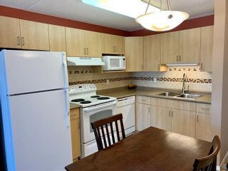 Photo 3: 503 403 Regent Avenue West in Winnipeg: West Transcona Condominium for sale (3L)  : MLS®# 202119616