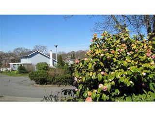 Photo 19: 1553 Marcola Pl in VICTORIA: SE Mt Doug House for sale (Saanich East)  : MLS®# 635437