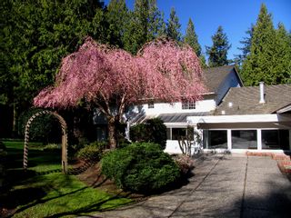 Photo 4: 13374 Vine Maple Drive in South Surrey: Elgin Chantrell House for sale (South Surrey White Rock)  : MLS®# F1003034