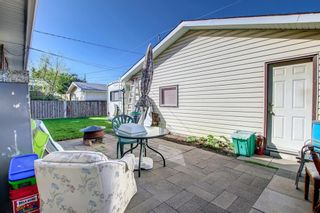 Photo 45: 132 Mardale Crescent NE in Calgary: Marlborough Detached for sale : MLS®# A1146772