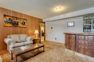 Photo 21: 10427 Wapiti Drive SE in Calgary: Willow Park Detached for sale : MLS®# C4232959