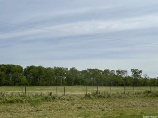 Photo 20: Abbott Acreage in Duck Lake: Residential for sale (Duck Lake Rm No. 463)  : MLS®# SK856969