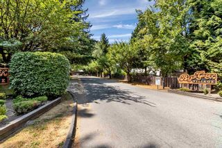 Main Photo: 49 8555 KING GEORGE Boulevard in Surrey: Queen Mary Park Surrey Townhouse for sale : MLS®# R2605044