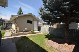 Photo 29: 10419 2 Street SE in Calgary: Willow Park Detached for sale : MLS®# C4296680