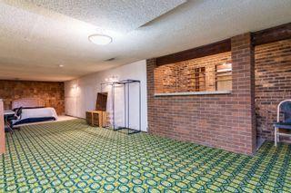 Photo 26: 155 MILLBOURNE Road E in Edmonton: Zone 29 House for sale : MLS®# E4265815