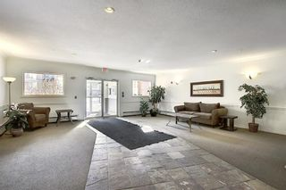 Photo 43: 218 838 19 Avenue SW in Calgary: Lower Mount Royal Apartment for sale : MLS®# A1070596