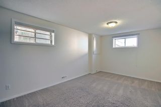 Photo 40: 66 Erin Green Way SE in Calgary: Erin Woods Detached for sale : MLS®# A1094602