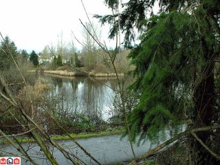 Photo 3: 31365 MCCONACHIE Place in Abbotsford: Abbotsford West House for sale : MLS®# F1200516
