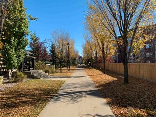 Photo 3: 28 4731 TERWILLEGAR Common in Edmonton: Zone 14 Townhouse for sale : MLS®# E4262627