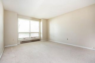 Photo 12: 162 Royal Avenue in Winnipeg: Scotia Heights Residential for sale (4D)  : MLS®# 202116390