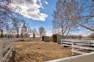 Photo 34: 17 Willowside Drive: Rural Foothills County Detached for sale : MLS®# A1141416