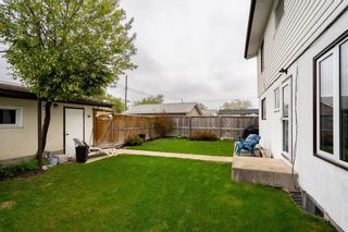 Photo 5: 317 Leila Avenue in Winnipeg: Margaret Park Residential for sale (4D)  : MLS®# 202112459