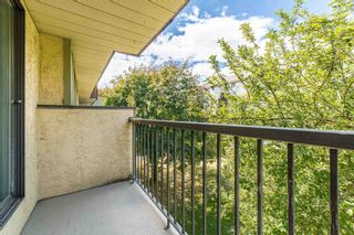 Photo 17: 308 45598 MCINTOSH Drive in Chilliwack: Chilliwack W Young-Well Condo for sale : MLS®# R2603170