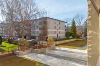 Photo 14: 202 1745 Leighton Rd in : Vi Jubilee Condo for sale (Victoria)  : MLS®# 871321