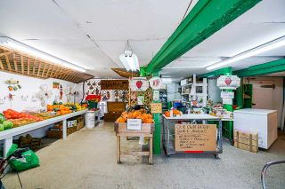 Photo 6: 17731 WESTMINSTER Highway in Richmond: East Richmond Agri-Business for sale : MLS®# C8035442