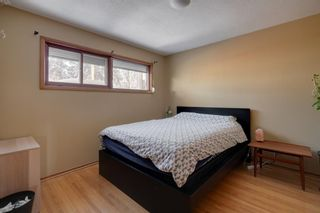 Photo 14: 2232 Langriville Drive SW in Calgary: North Glenmore Park Detached for sale : MLS®# A1068440